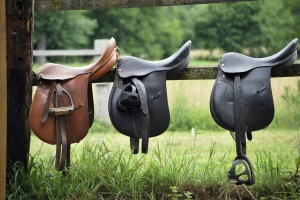 Dressage Saddle pic